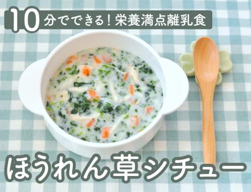 【管理栄養士監修】離乳食中期!栄養満点の「ほうれん草シチュー」レシピをご紹介